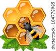 Bee on honeycomb - stock