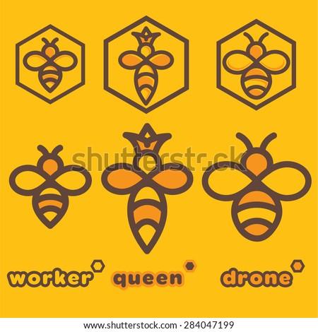 bee specimens - stock vector