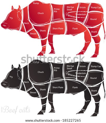 Beef cut or cuts of beef vector  - stock vector