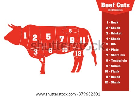 Beef cuts infographic set of meat parts, vector illustration - stock vector