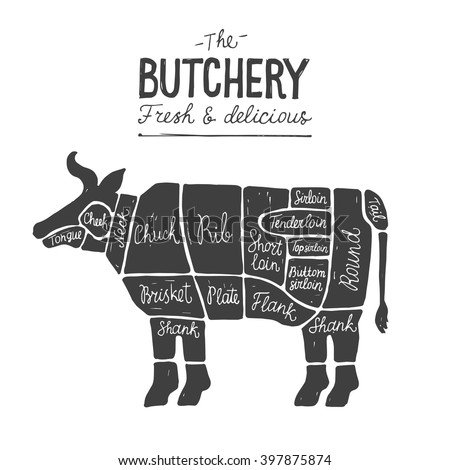 Beef Meat Cuts Diagram Butcher Chart Stock Vector 397875874 ...