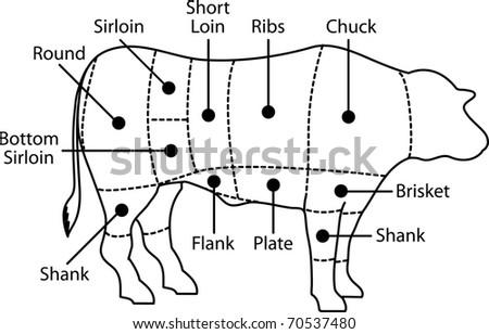 Beef Pig Diagram