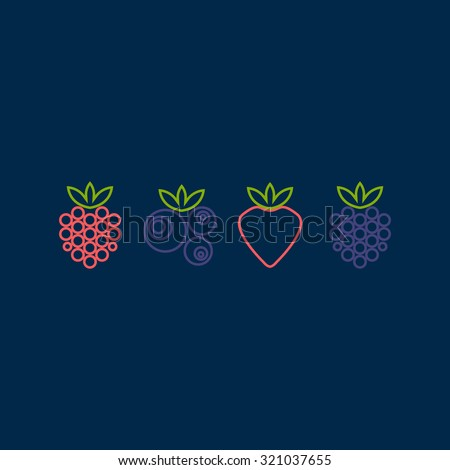 Berry icons. Raspberry, blueberry, strawberry, blackberry icons. Vector illustration - stock vector