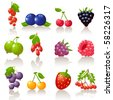 berry set - stock vector