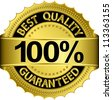 Best quality 100 percent guaranteed golden label, vector illustration - stock photo