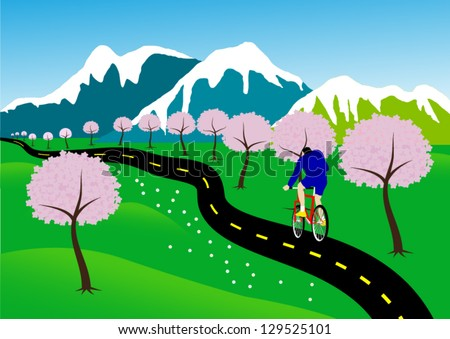Bicycle paths in nature, with cherry blossoms along the path. - stock vector