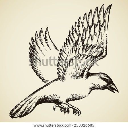 Big black crow in swings wings in flight. Vector monochrome freehand ink drawn backdrop sketchy in scrawl ancient style pen on paper with space for text - stock vector