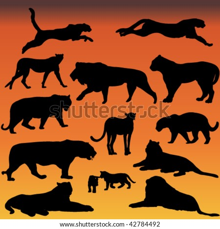 big cats silhouette collection - vector - stock vector