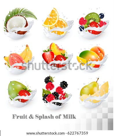 Big collection icons of fruit in a milk splash. Guava, coconut, mango, peach, strawberry, cherry, blueberry, banana, melon, orange, raspberry. Vector Set