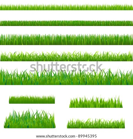 Big Green Grass, Isolated On White Background, Vector Illustration - stock vector