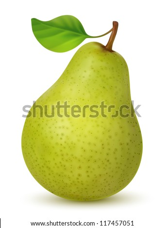 Big green pear on white background. Created using gradient meshes. - stock vector