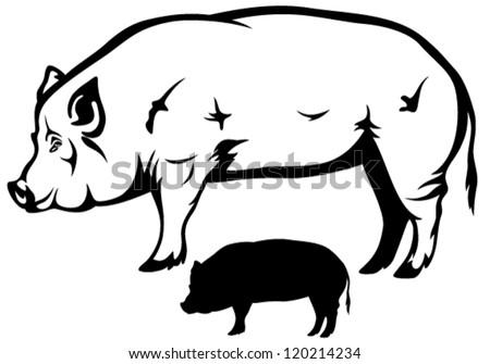 big hog black white vector outline stock vector 120214234