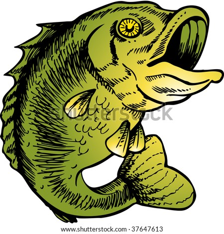 big mouth bass color drawing - stock vector