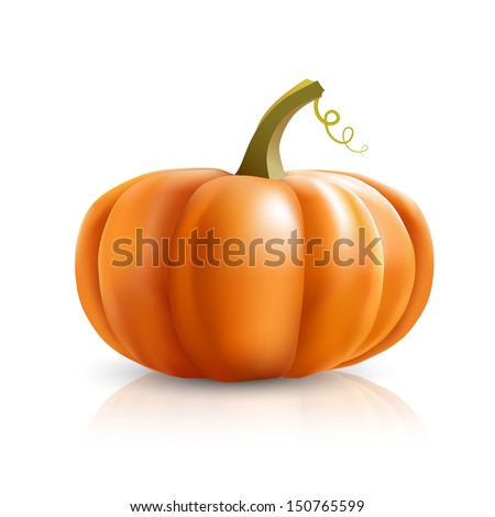 big orange pumpkins on white background, vector illustration, eps10