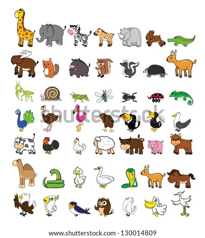big set funny animal - stock vector