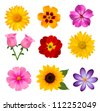 Big set of beautiful colorful flowers. Vector illustration - stock vector