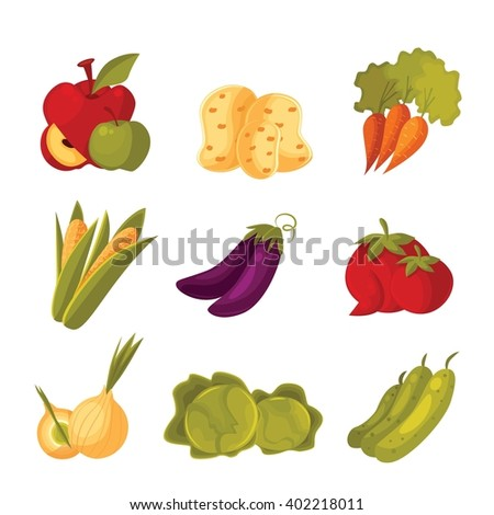 big set of different vegetables, tomato, zucchini, cabbage, corn, carrots, potatoes, vector colorful veggies isolated on white background, farm food, garden stuff in the arrangement. Vegetables icon.
