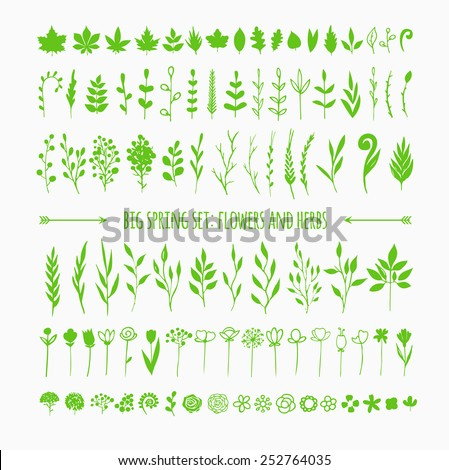 big set of hand drawn floral elements for your spring design, isolated on white, more than ninety different leaves and flowers - stock vector