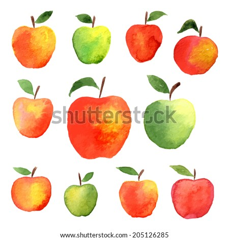 big set of watercolor apple - illustration on the theme of the summer and autumn - farm, fruit, natural. Green, yellow, red sweet and tasty apple. Hand drawn. - stock vector
