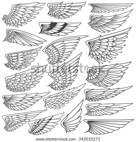 Big Set sketches of wings - stock vector