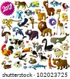 big vector animal set - stock vector