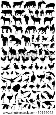 big vector collection of all domestic detailed farm animals silhouettes - stock vector