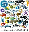 big vector sea-life animals set - stock photo