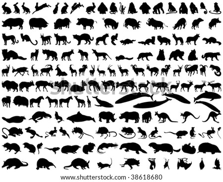 Biggest Set of  Animals Silhouettes in Different Poses. Zoo, Wildlife. Almost Each Kind of Fauna.  High Detail, Very Smooth. Vector Illustration.  - stock vector