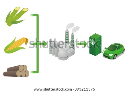 Biofuel: Biomass ethanol, made form Sugar, Starch, Cellulose,  diagram illustration - stock vector