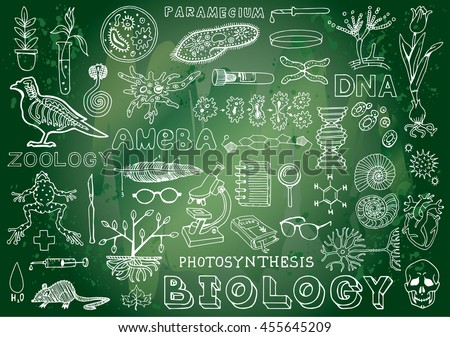 Biology Science Doodle Handwriting Elements in Green Chalkboard Background. Science and School Education theme.