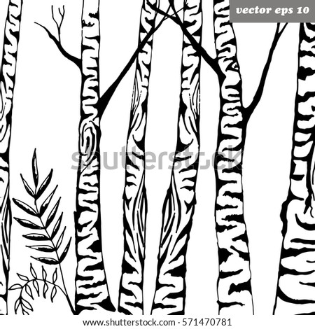 birch tree background vector illustration element stock vector rh shutterstock com birch tree vector graphics birch tree vector free download