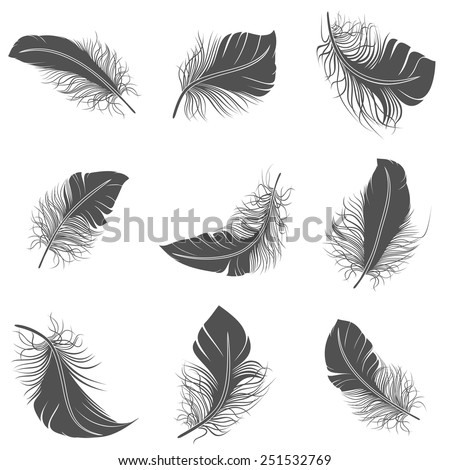 Bird feather black calligraphy literature allegory decorative icons set isolated vector illustration - stock vector