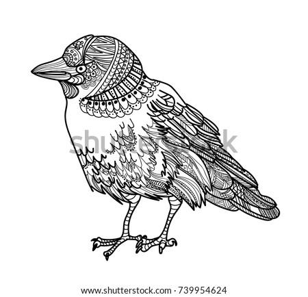 bird jackdaw meditation coloring mandala bird stock vector royalty