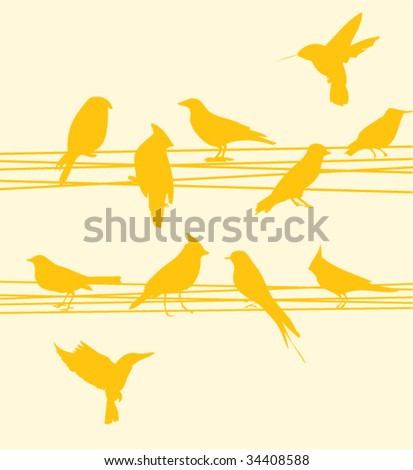 Bird on wires - stock vector