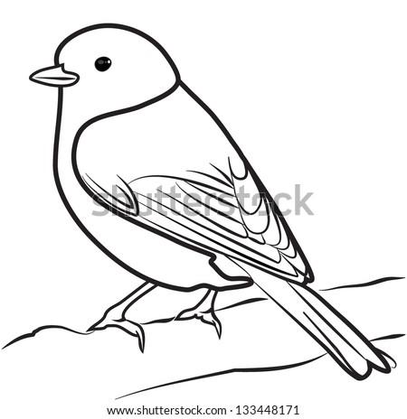 BIRD outline vector - stock vector