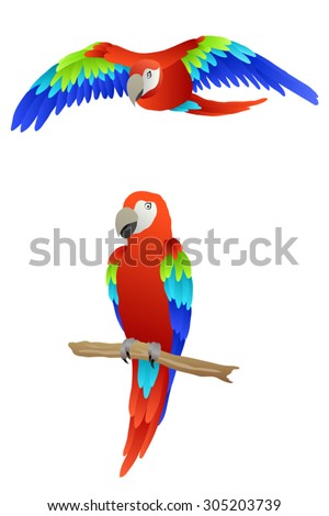 Bird parrot macaw red green blue isolated illustration vector - stock vector