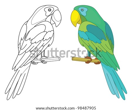 Bird parrot sits on a wooden perch, colored and black contour on white background. Vector - stock vector