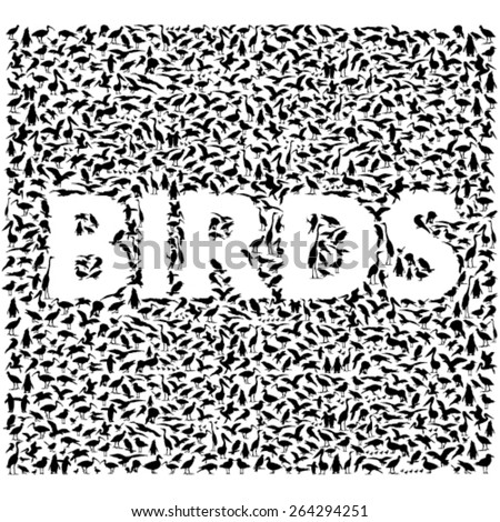 Bird silhouettes forming word BIRDS - stock vector