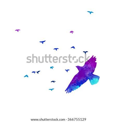 Bird watercolor. Vector - stock vector