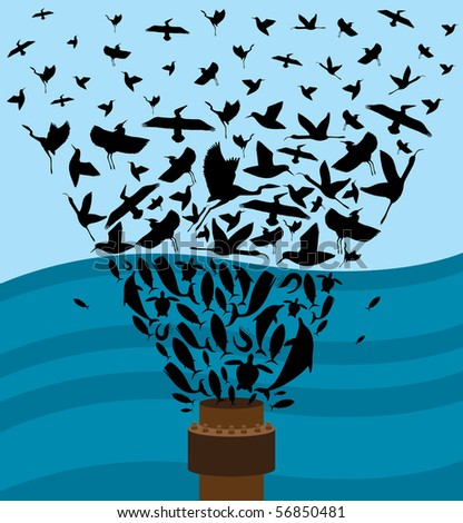 Birds and Marine Life that are affected by the Gulf Coast Oil Spill. - stock vector