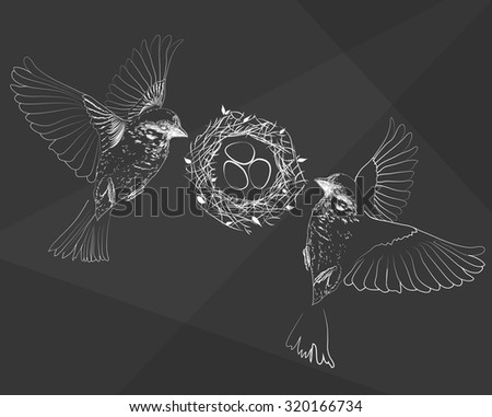 Birds Flying Near Nest With Eggs