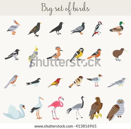 Birds illustration icons. Colorful cartoon birds icons set. Birds icons set, Birds illustration, Birds collection, Birds different, Birds exotic set, Birds image set. - stock vector