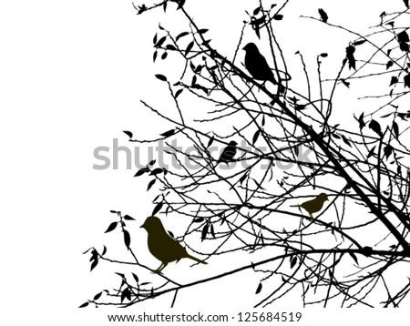 Birds on the tree. vector - stock vector
