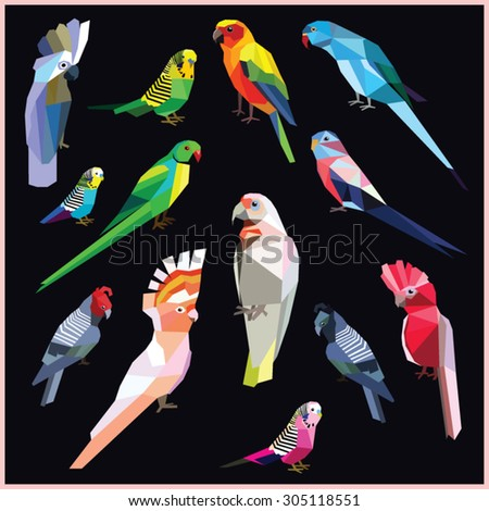 Birds-set of colorful low poly parrot birds isolated on black background.Sun,Bourke,Budgerigar pink blue,Rose ringed parakeet.Cock han gang-gang.Major Mitchell,White umbrella,Galah cockatoo.Corella. - stock vector