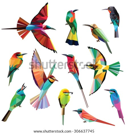 Birds-set of colorful meropidae birds low poly design isolated on white background.Southern,Northern Carmine bee eater,Blue tailed bee eater,Black, Green bee eater,White fronted,Red bearded bee eater. - stock vector