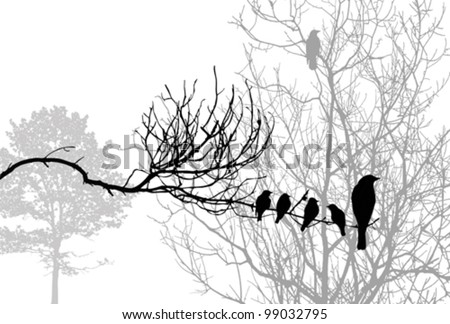 birds silhouette on wood branch, vector illustration - stock vector