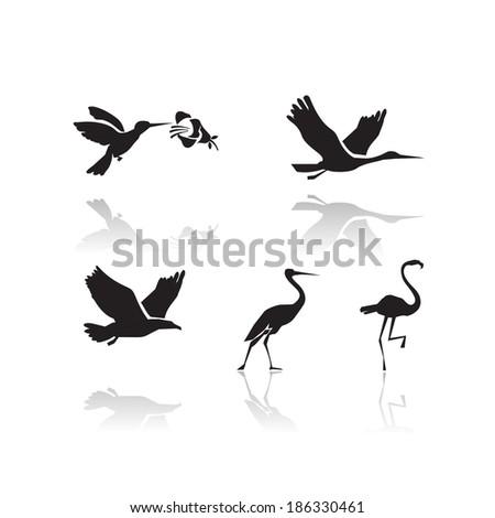 Birds. Vector format - stock vector