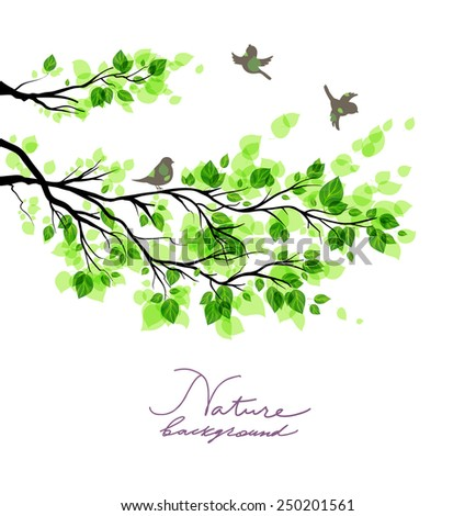 Birds with green branches. Summer or spring nature background with place for text. - stock vector