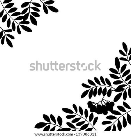 Black and white background, isolated silhouette of rowanberry branches and berries. Vector - stock vector