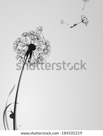 black and white background with dandelion, snail and ladybug - stock vector